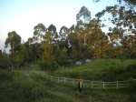 G_Camping Ground di Pagi Hari